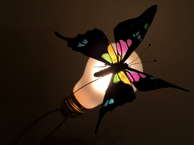 glowing transparent butterfly wings look like stained glass