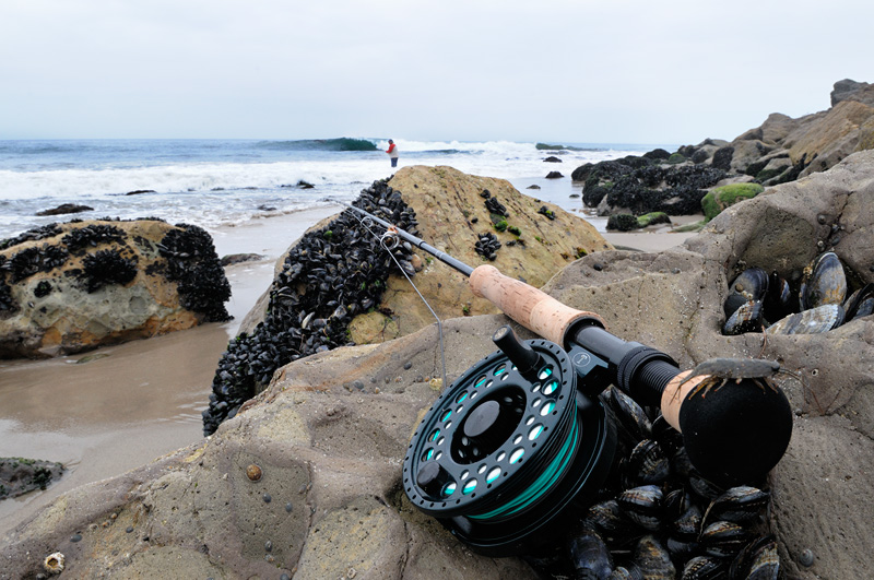 Fly Fishing Stock Photography Images