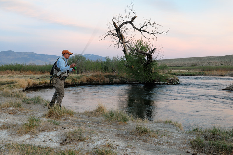 Eastern sierra fly fishing and scenic landscape photography for Sierra fly fishing