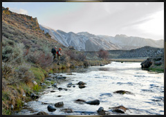 2008 Eastern Sierra fly fishing photography