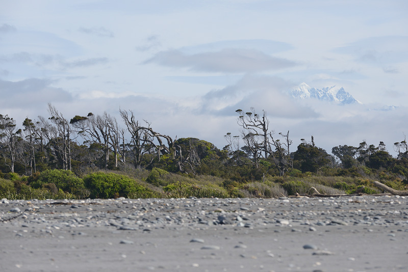 Mount Cook rises above the rugged New Zealand coastline