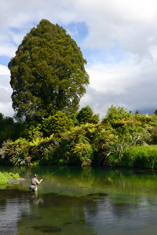 Fly fishing in New Zealand is pure delight