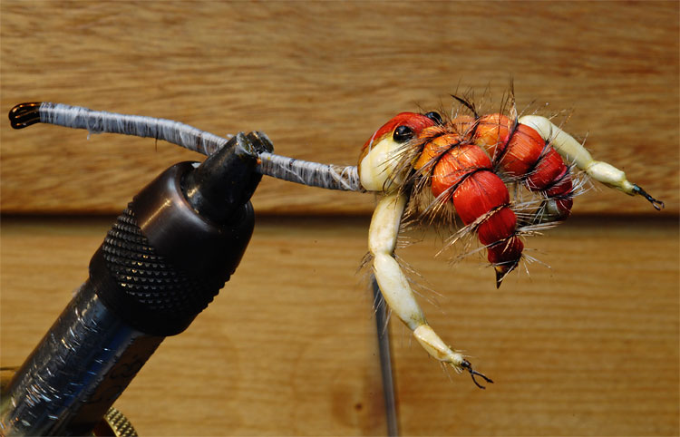 Fly Tying creating a realistic camel spider
