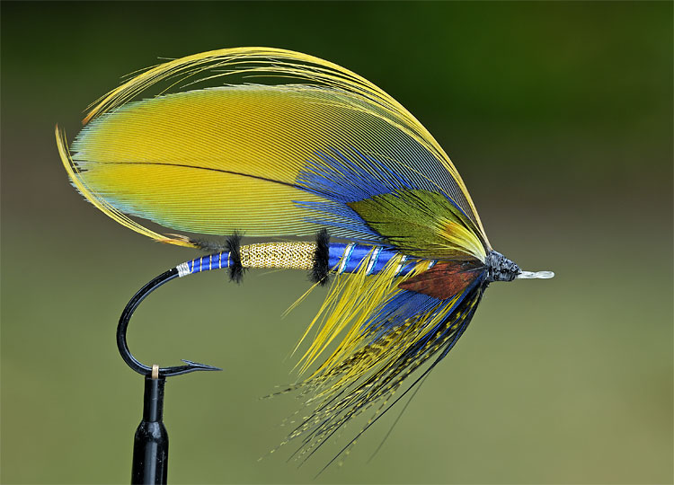 Freestyle full dressed atlantic salmon fly tying for Fly fishing feathers