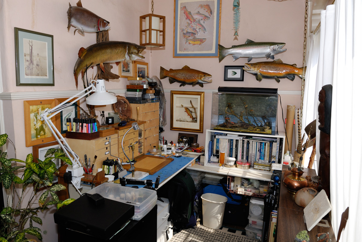 Fly Tying And Dressing Effective Flies For Catching Trout And Bass