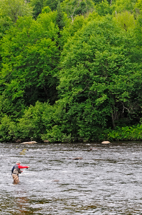 Ausable River Fly Fishing