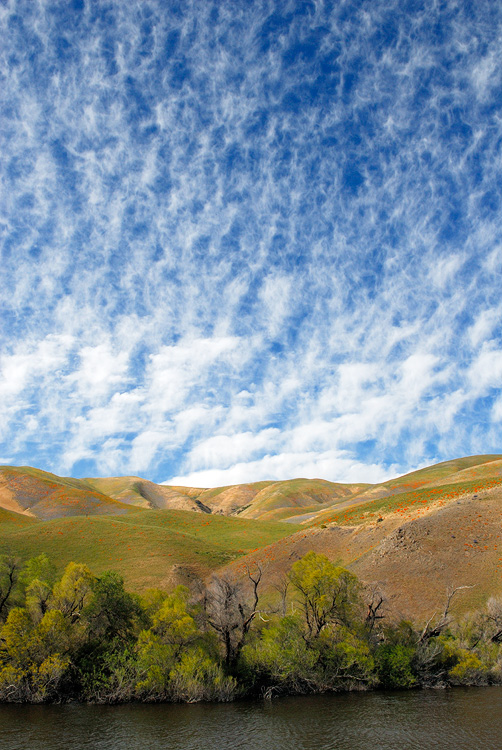 Scenic California And New York Landscape Photography